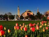 Фестивал на лалетата-Истанбул 2019г. , от Варна