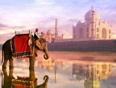 Индия – златният триъгълник